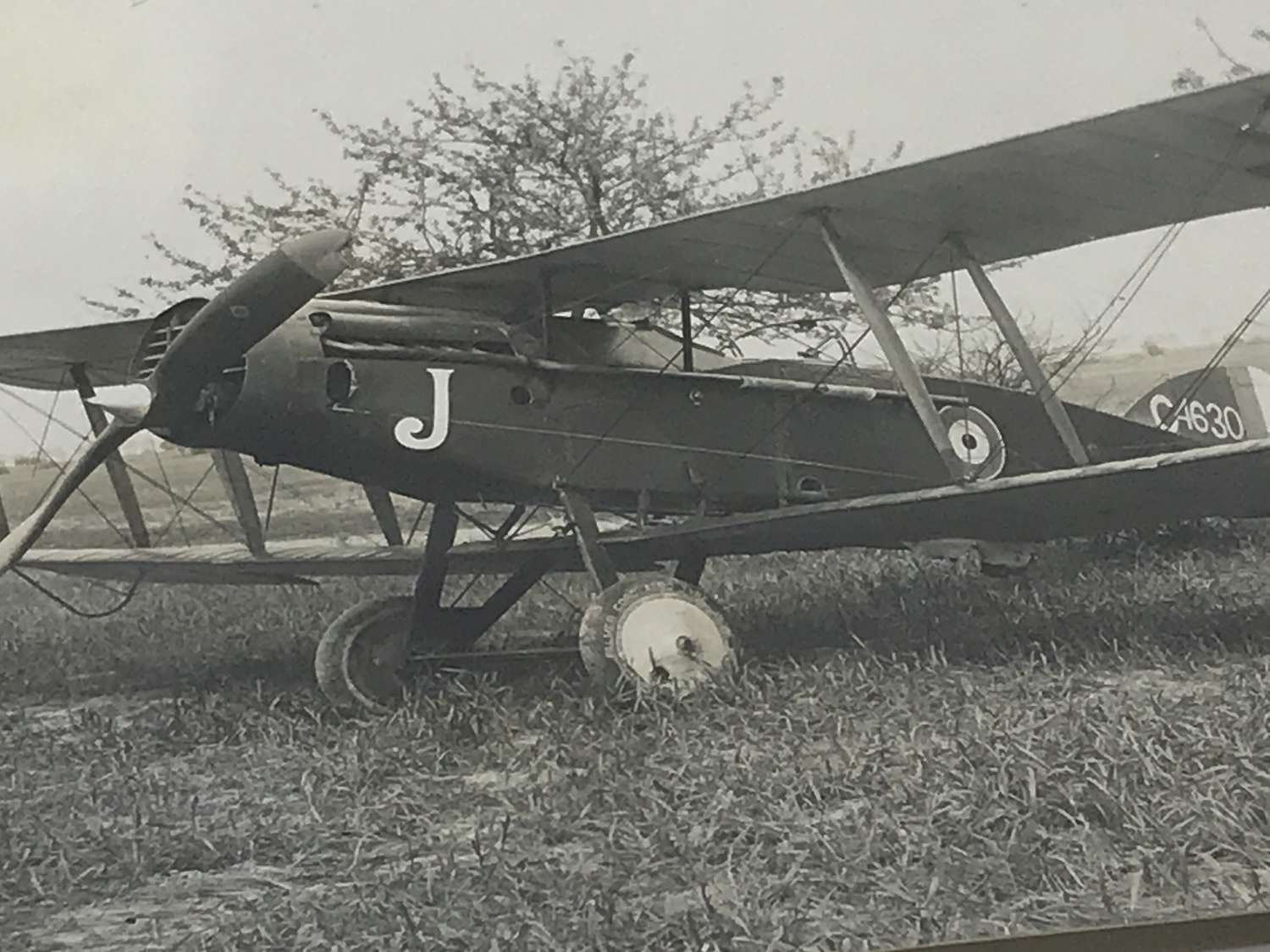 Photograph of a Bristol fighter C 4630